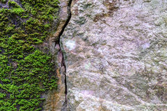 Natural fractured stone and moss in forest Royalty Free Stock Photography