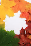 Thanksgiving, autumn border Stock Photos