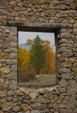 Natural Frame Stock Image