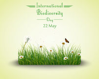 Natural frame with grass circle. Illustration of Natural frame with grass circle for International Biodiversity Day Stock Image