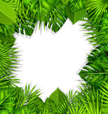 Natural Frame with Green Tropical Leaves Stock Photography