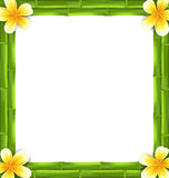 Natural Frame Made Bamboo and Frangipani Flowers, Copy Space for Your Text Royalty Free Stock Photos