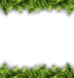 Natural Framework with Fir Twigs Stock Photo