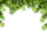 Natural Framework with Fir Twigs Royalty Free Stock Photo