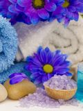 Natural fresh cosmetics fresh as spring royalty free stock image