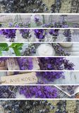 Natural, fresh cosmetics with lavender flowers. Collage, banners, beautful lavender fresh and decorative stock photo