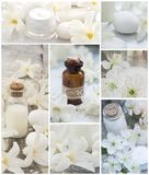 Natural, fresh cosmetics with white flowers. Fresh as spring flowers concept royalty free stock photo