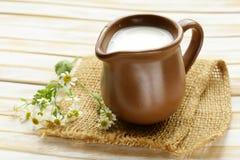 Natural fresh milk in a ceramic jug Royalty Free Stock Photos