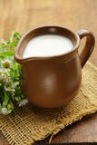Natural fresh milk in a ceramic jug Royalty Free Stock Image