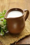 Natural fresh milk in a ceramic jug Royalty Free Stock Image