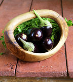 Natural fresh organic eggplants Royalty Free Stock Image