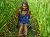 Natural and fresh portrait of young happy and exotic islander Asian girl from Indonesia smiling cheerful and excited posing in. Green field playing with rice royalty free stock images