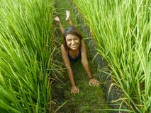 Natural and fresh portrait of young happy and exotic islander Asian girl from Indonesia smiling cheerful and excited posing in. Green field playing with rice stock photos
