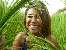 Natural and fresh portrait of young happy and exotic islander Asian girl from Indonesia smiling cheerful and excited posing in. Green field playing with rice royalty free stock photography