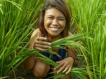 Natural and fresh portrait of young happy and exotic islander Asian girl from Indonesia smiling cheerful and excited posing in. Green field playing with rice stock image