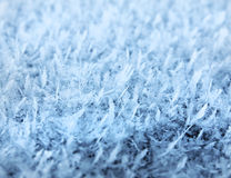 Natural frost snow ice crystals Royalty Free Stock Images