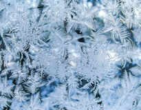 Natural frosty pattern on glass Royalty Free Stock Images