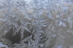 Natural frosty patterns on glass Royalty Free Stock Images