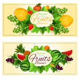 Natural fruits and berries banners Royalty Free Stock Images
