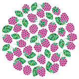 Natural fruits and berries round symbol with fresh  raspberry. Royalty Free Stock Image
