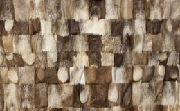 Natural fur background stock image