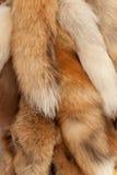 Natural fur Stock Photos