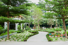 Natural. Garden design in bangkok thailand Royalty Free Stock Photography