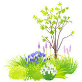 Natural garden. Illustration by watercolor paint touch stock illustration