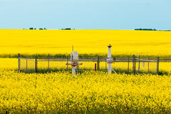 Natural gas wellheads canola agricultural farmland Stock Photos