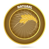 Natural grain Stock Images