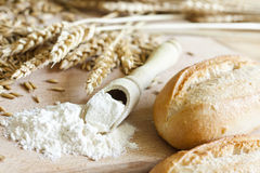 Natural grain for flour Royalty Free Stock Images