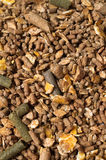Natural grain sportive  muesli background. for horse. Stock Photo