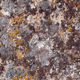Natural granite stone texture background. Rough and rusty. Close-up Royalty Free Stock Photos