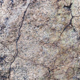 Natural granite stone texture background. Rough and rusty. Close-up. Macro royalty free stock image