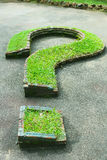 Natural grass question mark Stock Photos