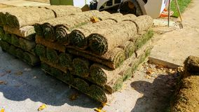 Stacks of sod rolls for new lawn. Natural grass stacks of sod rolls for new lawn green installation garden turf soil laying landscaping installing unrolling dirt royalty free stock photography