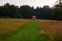 Natural Grassy Path Leading through Field toRed Hut in Woods Stock Photo