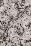 Natural gray granite slab background Stock Image