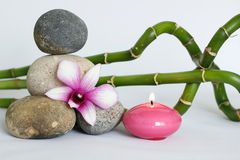 Natural gray pebbles arranged in Zen lifestyle with a two-tone orchid, on the right side of the twisted bamboos and a lighted cand Stock Photography