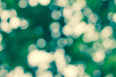 Natural green abstract background Royalty Free Stock Image