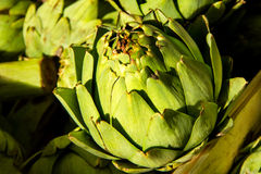 Natural green artichoke. In box in natural light and varied focus royalty free stock photo
