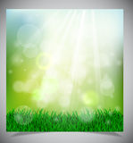 Natural green background stock photos