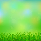 Natural green background Stock Images