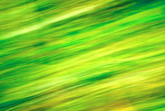 Natural green blur. Royalty Free Stock Image