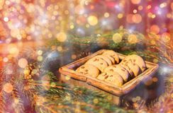 Natural green fir christmas wreath and oat cookies Royalty Free Stock Photo