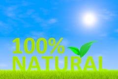 100% natural. Green grass landscape background 3d illustration Stock Image