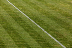 Natural green grass soccer field Stock Photo