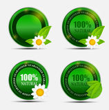 100% Natural Green Label Set. Vector Illustration Stock Photography