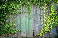 Natural green leaf frame Stock Photography