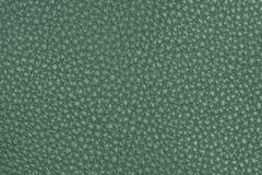 Natural green leather texture Stock Photos